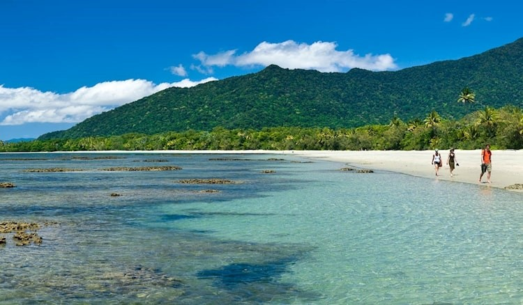 7 Life Changing Road Trips in Australia! Cape Tribulation