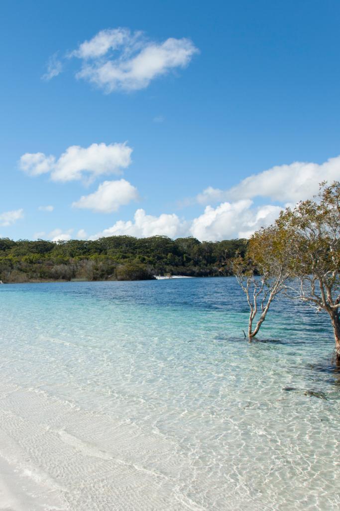 Regional travel in Australia. Fraser Island Queensland